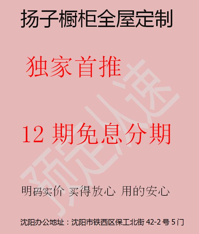 扬子橱柜全屋定制,十二期免期分期